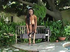 Monster Rack Ebony Lola Lane Trasgu